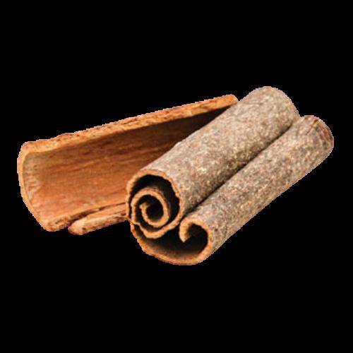 Cassia (Cinnamomum cassia)