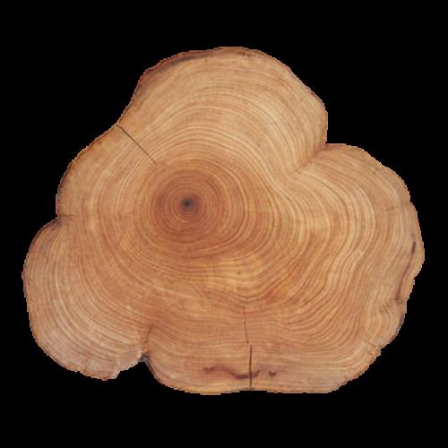 Cedarwood(Juniperus virginiana)