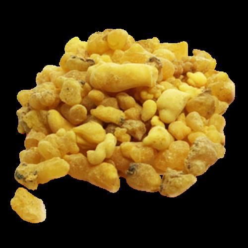 Frankincense (Boswellia carterii, Boswellia frereana, Boswellia sacra)