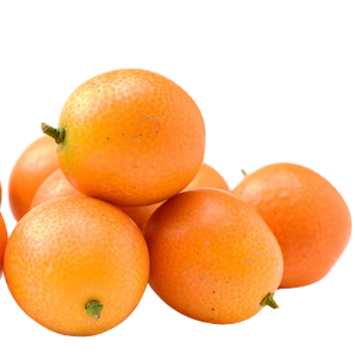 Kumquat (Citrus Japonica)