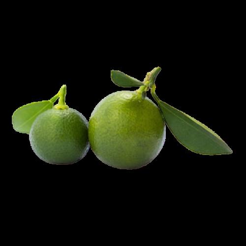 Lime ()